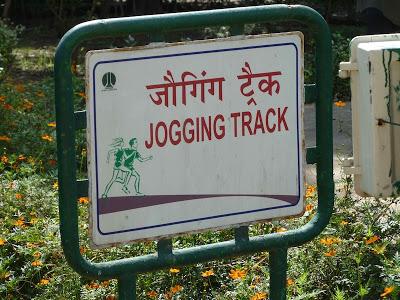 Lodi-jogging